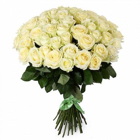 51 Роза Голландии 50 см белая