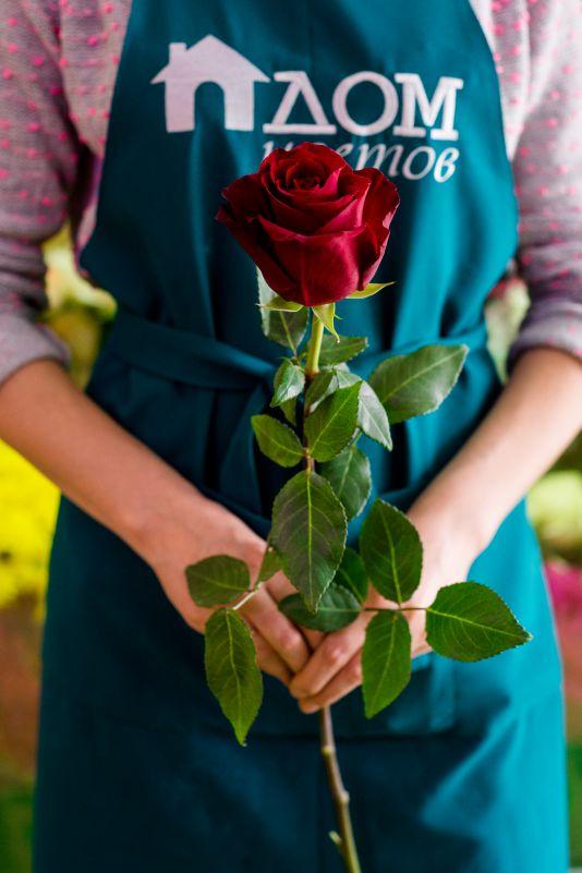 Роза красная 60см
