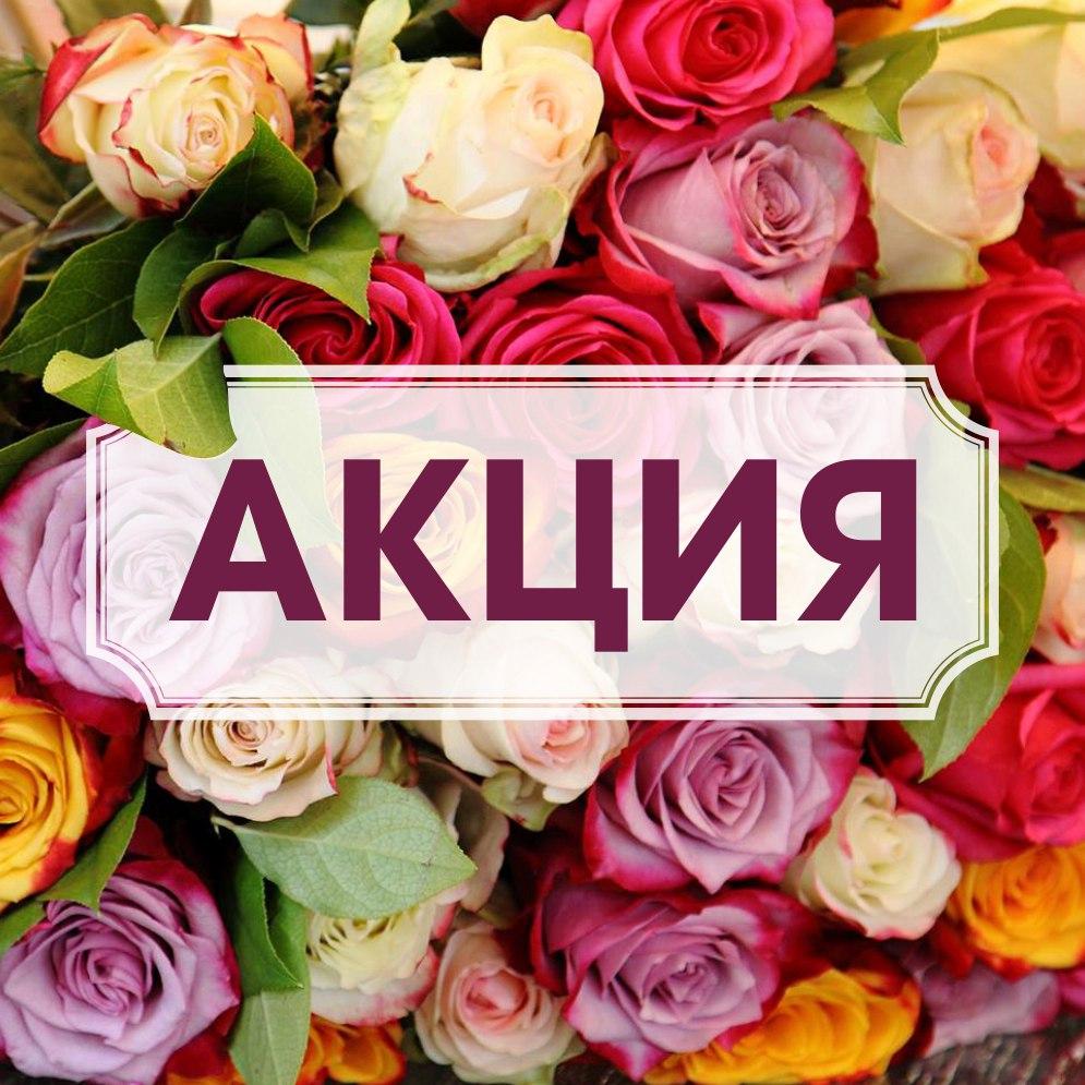 Дом цветов красноярск сайт